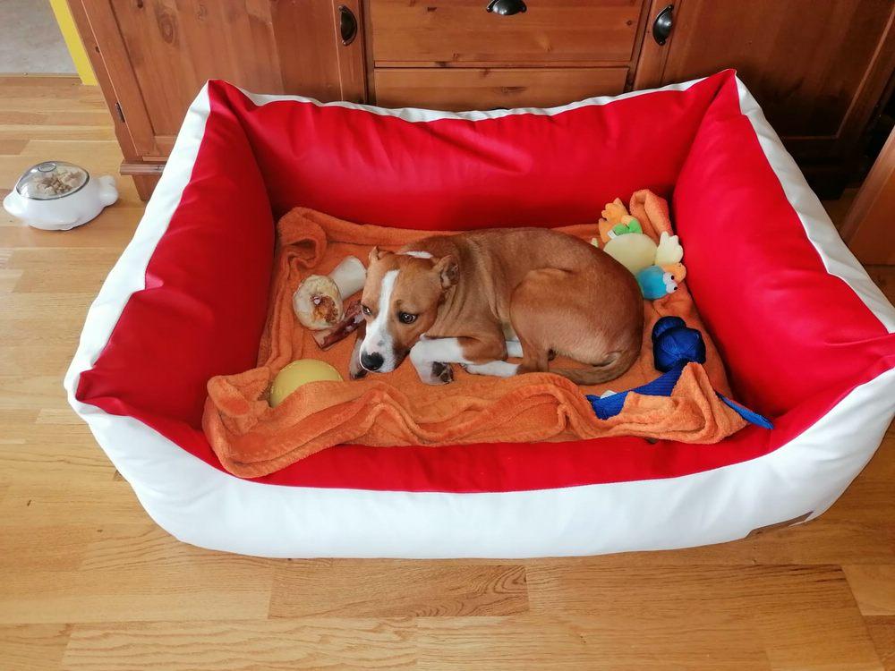 Hundebett Comfort Kunstleder Gelschaum und Gina